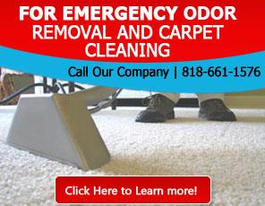 Carpet Cleaning Porter Ranch, CA | 818-661-1576 | Fast & Expert